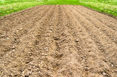 Plowed land field in a rural country setting, spring grass and fresh crops. Plowed land field in a rural country setting, spring grass and fresh crops Royalty Free Stock Images