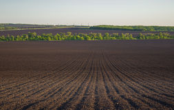 Plowed land in a field in spring Royalty Free Stock Photos