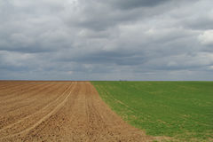 Plowed land Royalty Free Stock Photography