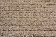 Plowed land for planting Stock Photography