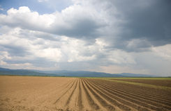Plowed land prepared for new crops Stock Photography