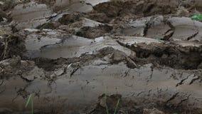 Plowed Land Soil stock footage