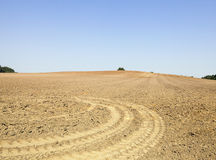 Plowed land, summer. Plowed land in the agricultural field after harvest of cereal, tractor tracks on the ground Royalty Free Stock Photography