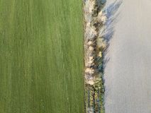 Plowed land and winter crops on field Stock Images