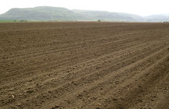 Plowed and ready for sowing agricultural fields. Stock Photography
