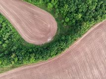 Plowed sätter in och skogen Arkivfoto