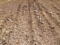 Plowed soil Stock Image