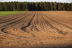 Plowed soil Stock Photo