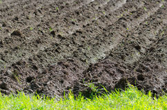Plowed soil Stock Photography