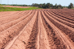 Plowed Soil Stock Photo