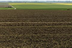 Plowed soil on agricultural fields in spring. Soil texture background Royalty Free Stock Images