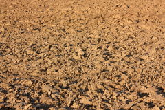 Plowed soil in Aisne Royalty Free Stock Photography