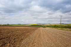 Plowed soil and country road Stock Images