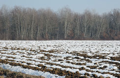 Plowed soil covered in snow Royalty Free Stock Photography