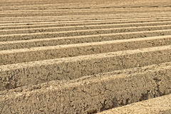 Plowed soil in the field Stock Photos