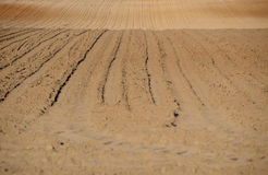 Plowed soil in full sun. Royalty Free Stock Photos