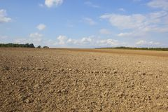 Plowed soil in summer Royalty Free Stock Photo