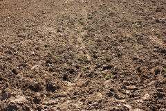 Plowed soil textured surface with grooves Royalty Free Stock Photo