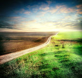 Plowed and sown field with crosses his way Royalty Free Stock Image