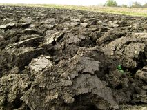 Plowed Ukrainian chernozem closeup. Stock Photography