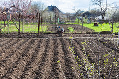 Plowed vegetable beds and tiller in village Royalty Free Stock Photos