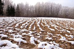 Plowed winter farmland field covered snow Royalty Free Stock Photo