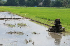 Plower στον τομέα ρυζιού Στοκ εικόνες με δικαίωμα ελεύθερης χρήσης