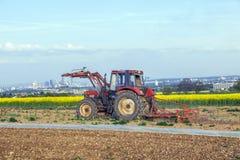 Plowes dell'agricoltore il campo del tulipano Immagine Stock