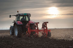 Plowing at dusk Stock Photography