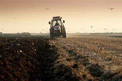 Plowing at dusk Royalty Free Stock Photos