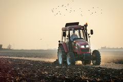 Plowing at dusk Royalty Free Stock Photo