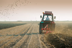 Plowing at dusk Royalty Free Stock Image