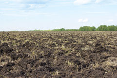 Plowing of the earth. Preparing the ground for sowing seeds. Agriculture Royalty Free Stock Photography