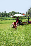 Plowing farmer. A farmer plowing the field by tractor royalty free stock image