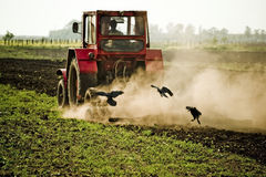 Plowing a Field Stock Photos