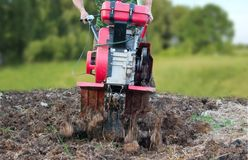 Plowing the potato field with a red cultivator. Spring work in the garden Royalty Free Stock Images