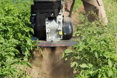 Plowing potato mini tractors plow. stock photography