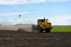 Plowing Stock Photography