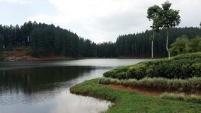 Plsce de Natchural em Sri Lanka Imagem de Stock