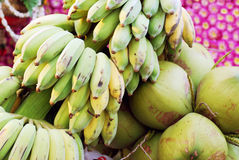 Plátanos y cocos verdes Imagen de archivo libre de regalías