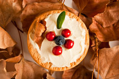 Plätzchen mit Sahne Käse und Blaubeeren Lizenzfreies Stockfoto