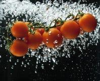 pluśnięcia pomidoru woda Obraz Stock