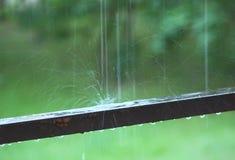 Pluśnięcie deszcz krople obrazy royalty free