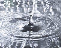 Pluśnięcie woda od spada kropli Fotografia Royalty Free