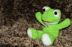 Pluche groene kikker Royalty-vrije Stock Afbeeldingen