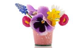 Plucked garden flowers Stock Image