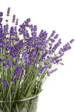 Plucked lavender in glass vase Royalty Free Stock Photos