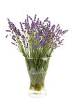 Plucked lavender in glass vase Stock Photo