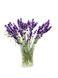Plucked lavender in glass vase Royalty Free Stock Photo