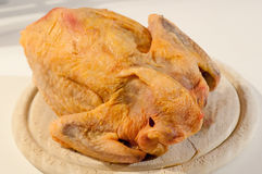 Plucked poultry Stock Photography